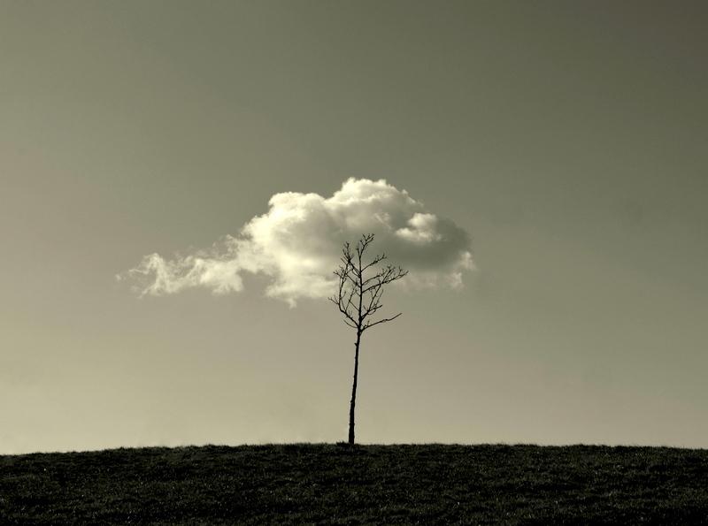 ...pozwolić ponieść się fantazji tkwiącej w naszej duszy i rozpalić wyobraźnię.....
